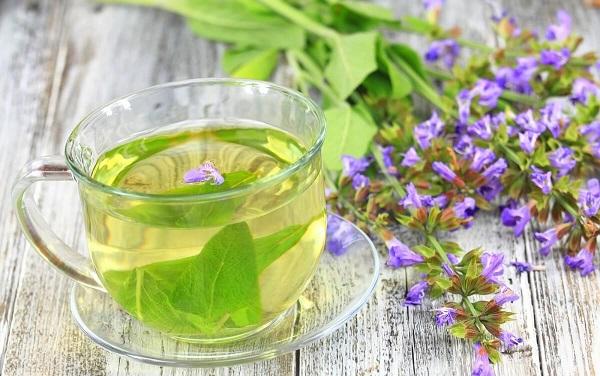 naturalna herbata z szałwii
