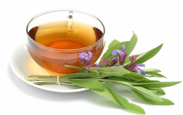 herbata zaparzona z liści szałwii