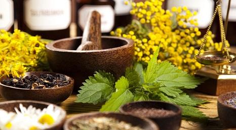 zylaki leczenie ziolami