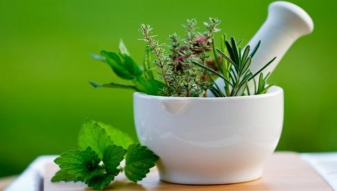skuteczne ziola na zylaki